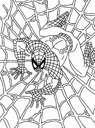 Mẫu tranh tô màu cho bé hình siêu nhân nhện