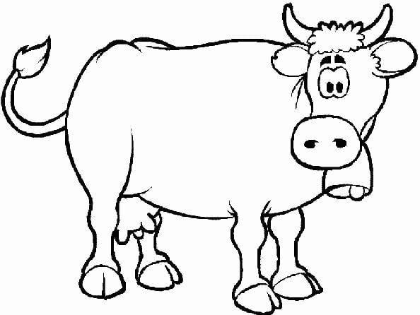Mẫu tranh tô màu cho bé hình chú bò