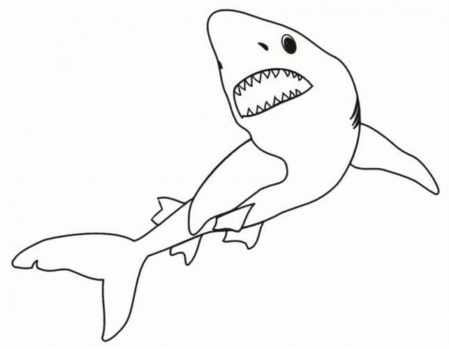 Mẫu tranh tô màu cho bé từ 2 đến 5 tuổi hình con cá mập