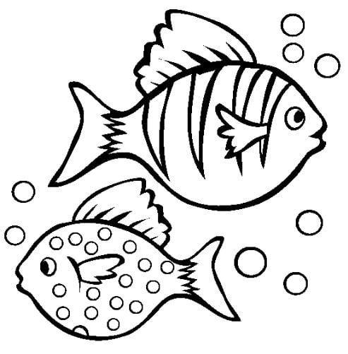Mẫu tranh tô màu hình 2 con các bơi ngược nhau dành cho bé từ 2 đến 5 tuổi