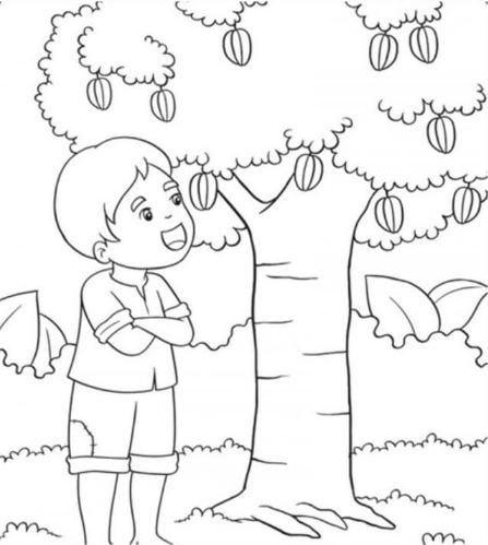 Mẫu tranh tô màu hình cây khế và cậu bé dành cho bé mầm non