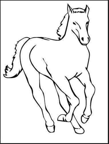 Mẫu tranh tô màu hình con ngựa đang chạy