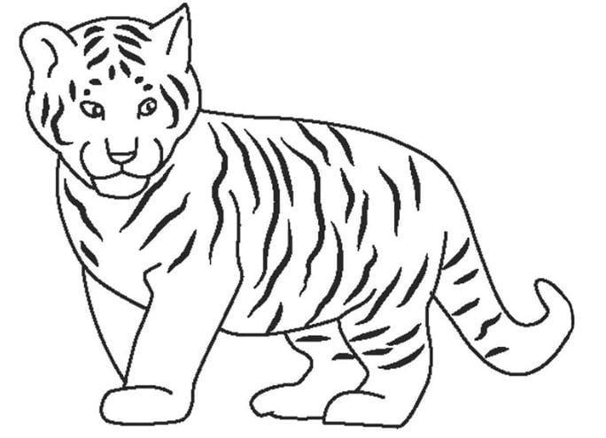 Mẫu tranh tô màu hình chú hổ con đáng yêu dành cho bé