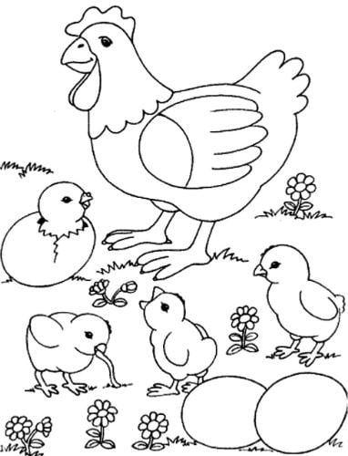 Mẫu tranh tô màu cho bé cô gà mái và đàn con