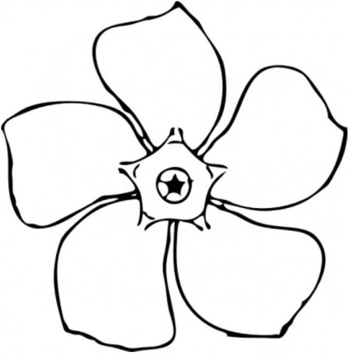 Mẫu tranh tô màu bông hoa đơn giản dành cho bé 2 tuổi