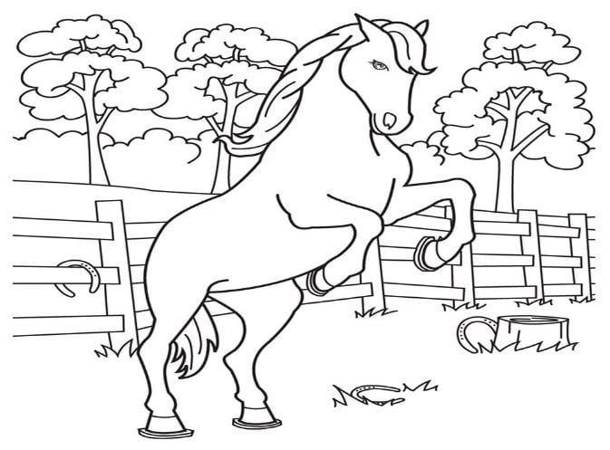 Mẫu tranh tô màu hình chú ngựa cho bé
