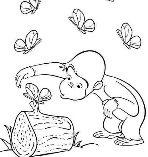 Mẫu tranh tô màu cho bé hình chú khỉ và bướm