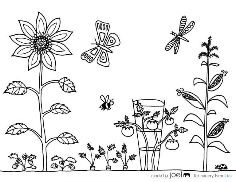 Tranh tô màu cho bé theo chủ đề thực vật.