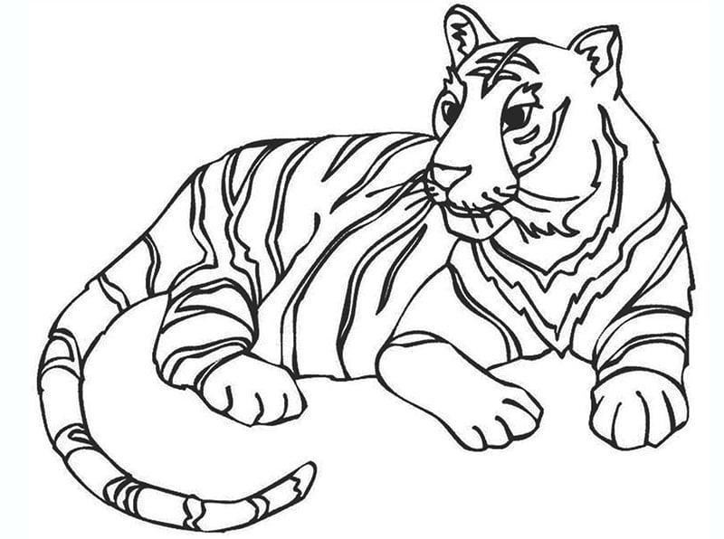 Tranh tô màu động vật – hình con hổ