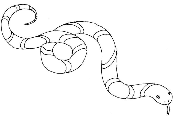 Mẫu tranh tô màu cho bé hình con rắn nhiều màu sắc