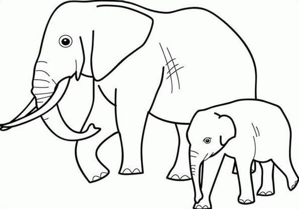 Mẫu tranh tô màu 2 mẹ con nhà voi dành cho bé