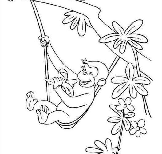 Mẫu tranh tô màu hình chú khỉ đang ăn chuối dành cho bé