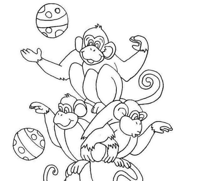 Mẫu tranh tô màu cho bé hình những chú khỉ đang chơi bóng