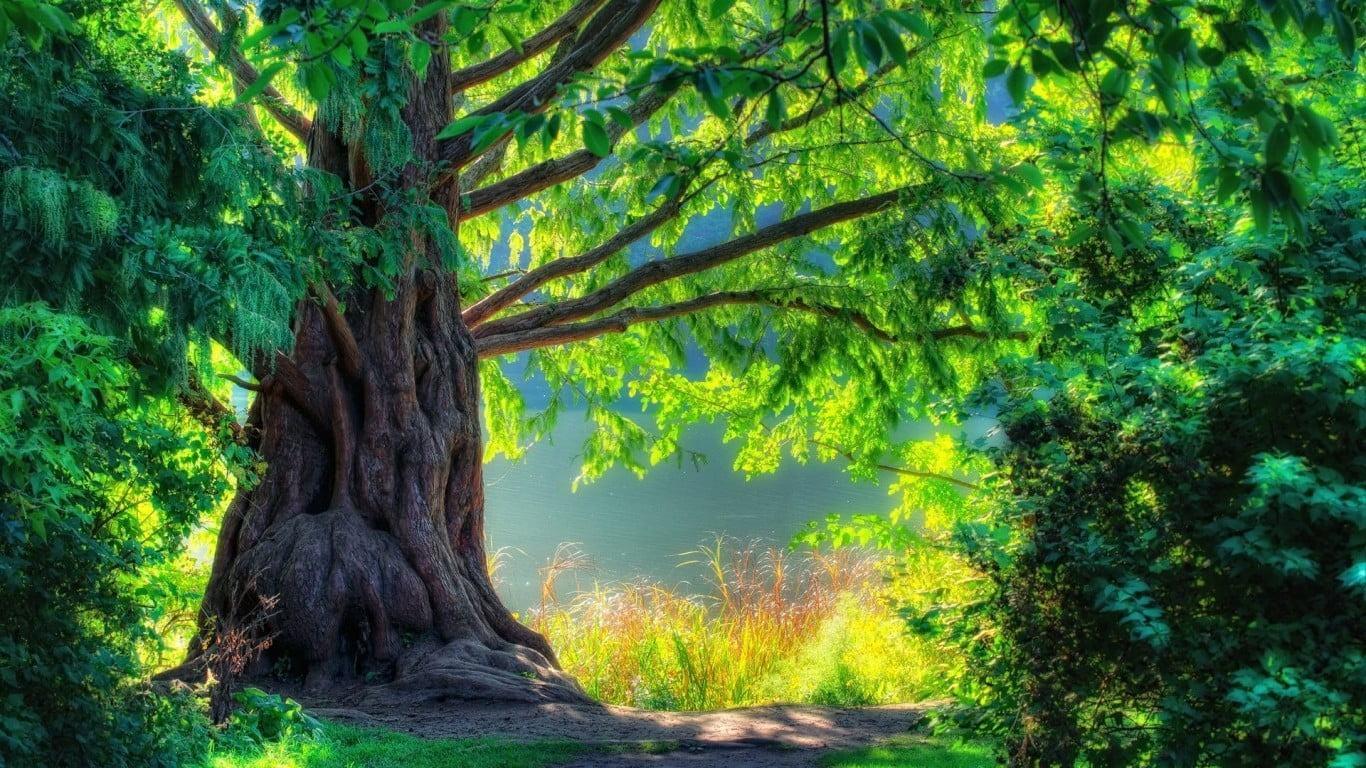 大自然带来的美丽风景