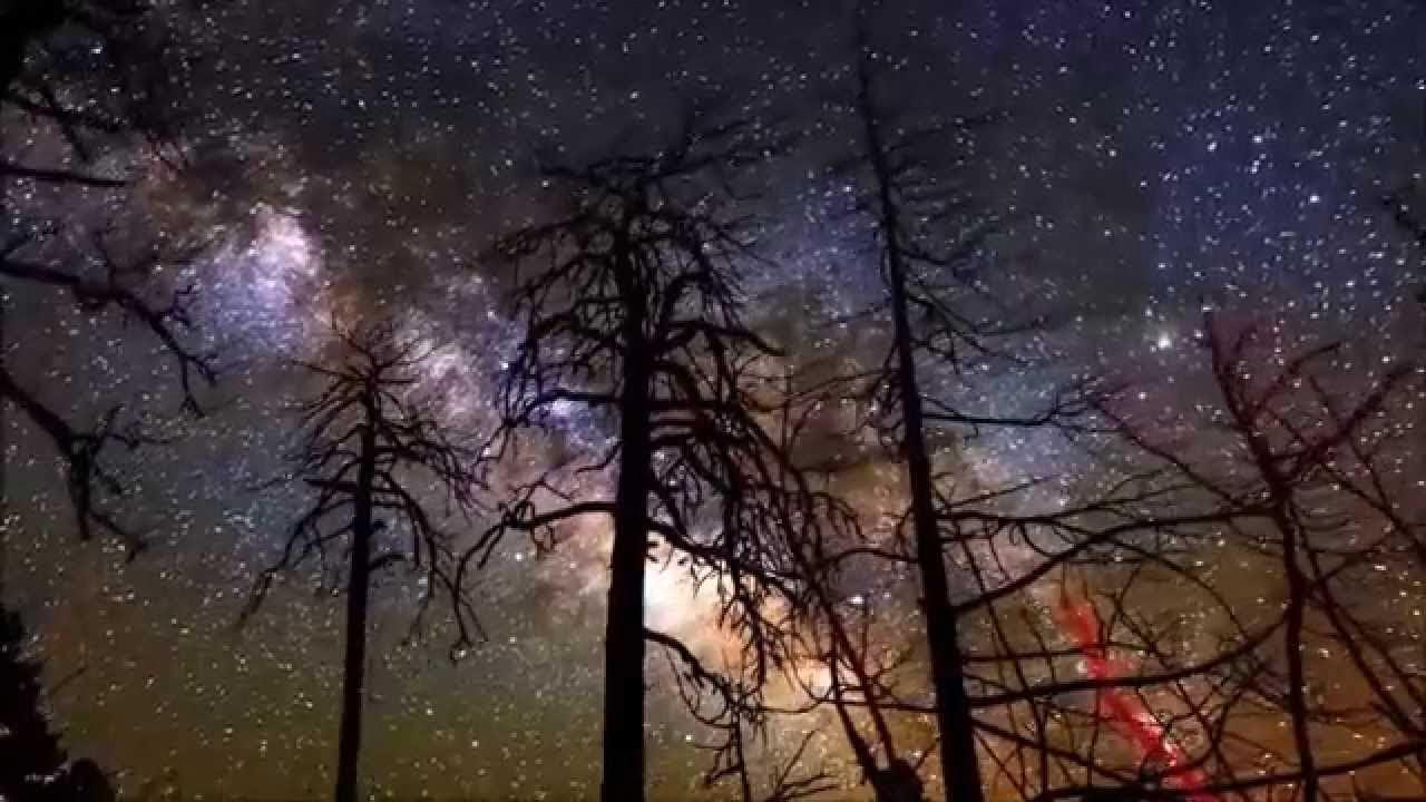 Bức tranh phong cảnh quê hương trong khung cảnh ban đêm với bầu trời đầy sao