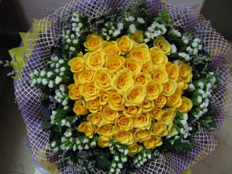 Hình ảnh Hoa hồng vàng - Bó hồng vàng đẹp nhất