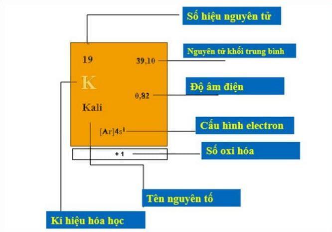 Cách xem bảng tuần hoàn hóa học