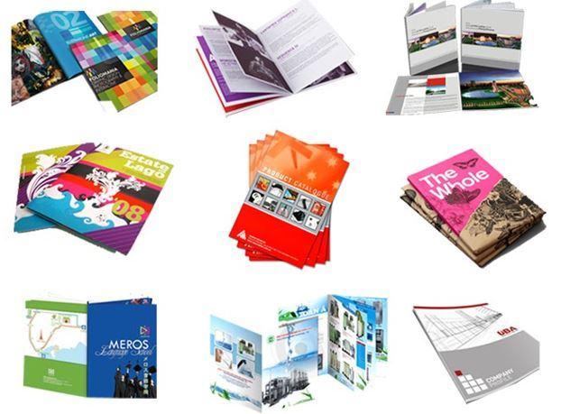 Công ty in Quang Hải tự hào lọt top 10 xưởng in catalogue tại TPHCM uy tín, chất lượng
