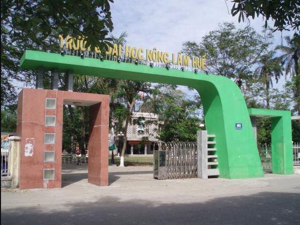 Trường Đại Học Nông Lâm – Đại Học Huế