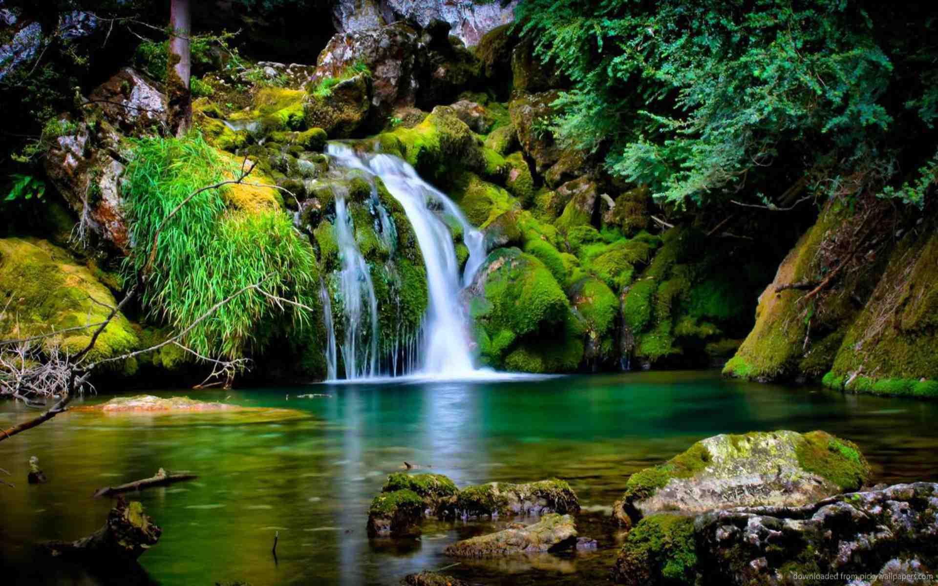 Ảnh bìa đẹp phong cảnh thiên nhiên yên tĩnh và thanh đạm