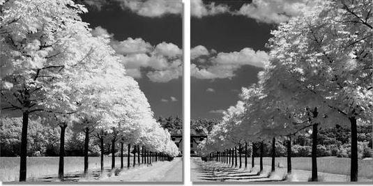 Tranh trắng đen nghệ thuật phong cảnh đẹp