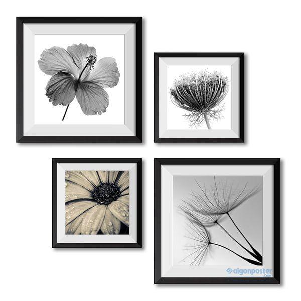 Tranh nghệ thuật trắng đen những loài hoa trang trí trong phòng khách