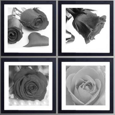 Tranh trắng đen nghệ thuật về loài hoa tượng trưng cho tình yêu